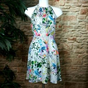 New w/Tags Express Floral Print Fit & Flare Dress